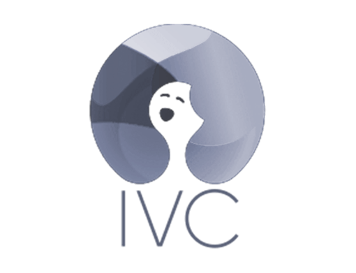 https://www.diversions.nl/wp-content/uploads/2019/06/ivc-logo.png